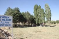 KAYYUM - Kayyumun Açtığı Piknik Alanı Dolup Taşıyor