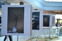 RÖNESANS - 'Sanat Kareleri' Fotoğrafları Kahramanmaraş Piazza'da Sergilenecek