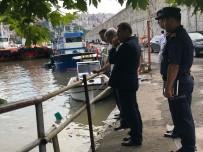 İŞ SAĞLIĞI - Vali Çınar, Liman Caddesi'nde İncelemelerde Bulundu