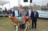 Çambaşı Yaylası Festivali 2'Nci Gününde