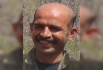 Lice'de Öldürülen Terörist Gri Liste Çıktı