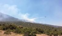 Tunceli'deki Orman Yangını Söndürüldü