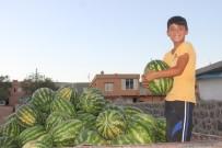 ORGANİK MEYVE - Yavuzeli Çiftçisinden Organik Tarım Tavsiyesi