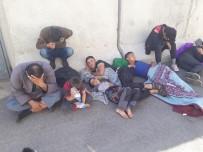 KAÇAK MÜLTECİ - Hatay'da 18 Kaçak Mülteci Yakalandı