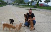 BAĞIMSIZ MİLLETVEKİLİ - Trabzon'un Fahri Müfettişi Açıklaması 'Teoman Ağabey'