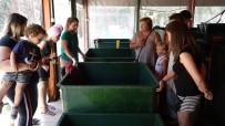 DENİZ KAPLUMBAĞALARI - Yaralanan Deniz Kaplumbağası En Az 2 Yılda İyileşiyor