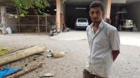 Anneleri Ölen 6 Civcive Evin Köpeği 'Aslan' Annelik Yapıyor