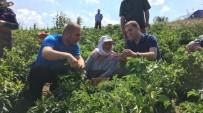 AHMET AKıN - Balıkesir'de Çiftçi Sayısı Azalıyor