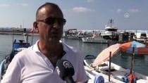 1 EYLÜL - Batı Karadenizli Balıkçılar Yeni Sezondan Umutlu