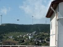 GÖÇMEN KUŞLAR - Belen'de Göçmen Kuşların Geçiş Güzergahına 'Kuş Gözlem Merkezi'