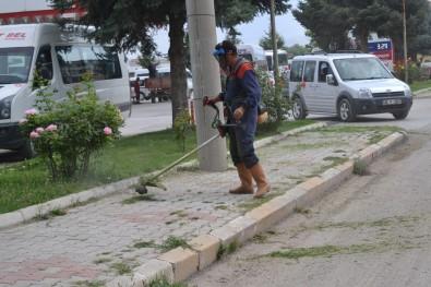 Şuhut'ta Çim Biçme Çalışmaları Tam Gaz Devam Ediyor
