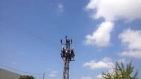 FINDIK TOPLAMA - YEDAŞ, Salıpazarı'nda Artan Enerji Talebini Karşılıyor