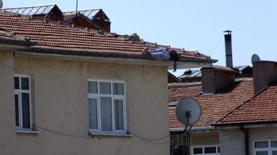 Çatıda uyuya kalınca olanlar oldu