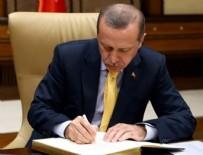 TASARRUF MEVDUATı SIGORTA FONU - Erdoğan o yasayı onayladı