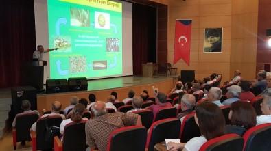 Mersin'de 'Akdeniz Meyve Sineği Ve Sirke Sineği İle Mücadele' Konferansı