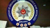 CEYLANPINAR - Şanlıurfa'da Tefeci Operasyonu
