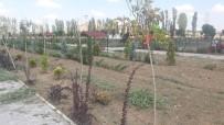 Sungurlu'da Park Ve Bahçeler Bayrama Hazırlanıyor
