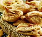 CELEP - Kuru incir ihracatı 250 milyon doları aştı