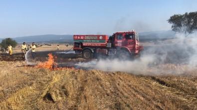 Kargadan Çıktığı Sanılan Yangında 10 Dönüm Buğday Tarlası Yandı