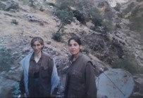 KADIN TERÖRİST - Mahmur Kampından Norveç'e Tedavi Amaçlı Giden PKK'lı Terörist Türkiye'ye Teslim Edildi