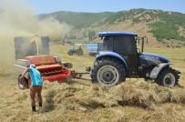 Ottan iyi verim alan çiftçinin keyfi yerinde