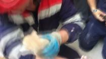 YAVRU KEDİ - (Özel) Sultanbeyli'de Su Borusuna Sıkışan Yavru Kedileri İtfaiye Kurtardı