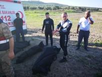 MUSTAFA KORKMAZ - Hatay'dan çok acı haber! Cesetlere ulaşıldı