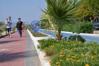 DAVUTLAR - Büyükşehirden Yaza Çiçek Dokunuşu