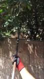 Dikenli Tellere Takılan Kediyi İtfaiye Kurtardı