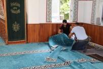 SIIRT BELEDIYESI - Siirt'te Bazı Camilerin Halıları Yenilendi