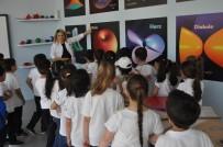OPTİK İLLÜZYON - Tales Matematik Müzesi Ve Bilgi Koleji'yle Bilgi Toplumuna