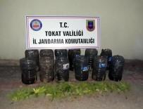ŞENYURT - Tokat'ta Kubar Esrar Operasyonu, 1 Tutuklama, 1 Firar