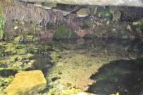 ALABALIK - Bu Değerli Kaynak Suyu Yıllardır Boşuna Akıyor
