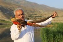 Ekşisu Mesire Alanına Kanatlı Hayvan Barınağı Oluşturuldu