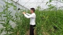 Genç Çiftçi Desteği Hayatını Değiştirdi