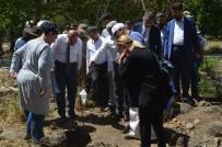 HÜSEYİN YAYMAN - Hatay'da Kayı Boyu Tamgalı Mezarlar Bulundu