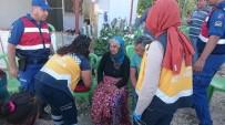 EĞİTİMLİ KÖPEK - Mersin'deki Kayıp Kadın Bulundu