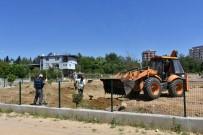 KEÇİ - Nazilli'ye Meyve Bitkileri Parkı Kazandırılıyor