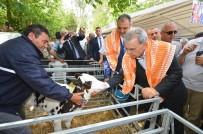 AZIZ KOCAOĞLU - Tarımda Yüksek Enflasyona İzmir Freni