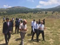AVNI KULA - Vali Su, Erdemli'deki Yatırımları İnceledi