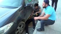 YAVRU KEDİ - Araç Motoruna Sıkışan Yavru Kedi Kurtarıldı