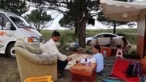 BAL ARISI - Kovanların Peşinde Göçebe Hayatlar