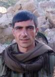PKK - Yeşil kategoride aranan terörist öldürüldü