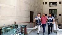 87 Parça Beyaz Eşya İle Yakalanan 'Spotçu Hırsız' Açıklaması