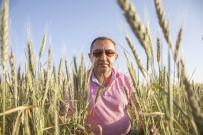 MUSTAFA AKGÜL - Demirden Açıklaması 'Çiftçi Borçları Ertelendi'