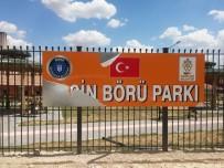 Gercüş'te Yasin Börü Parkı İçler Acısı Durumda