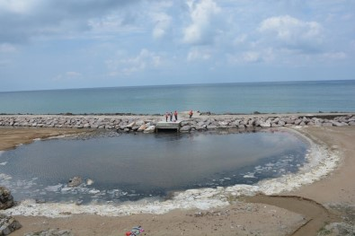 Koku Gelen Kumkapı Sahili Temizlenmeye Başladı