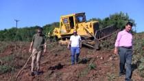 MARMARA DENIZI - Marmara Adaları 'Fıstık' Gibi Olacak