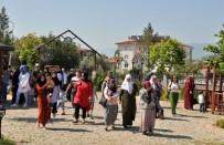 MUAMMER AKSOY - Şehir Gezileri Kaldığı Yerden Devam Ediyor