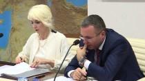 ORMAN VE SU İŞLERİ BAKANI - Bakan Pakdemirli Sırbistanlı Heyetle Görüştü